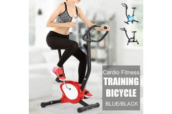 Cardio Exercise Bike Silent Cycling Bike Anti-slip Pedals Adjustable Height Bicycle + LCD Display Home Indoor Workout Fitness Sport Fitness Home Gym Equipment