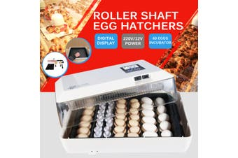 60 Eggs Mini Digital Egg Incubator Hatcher Transparent Eggs Hatching Machine Automatic Temperature Control for Chicken Duck Bird Eggs AC220V