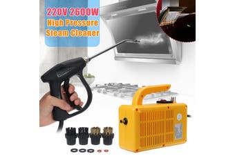 220V 2600W Auto Portable Cleaner Moible Pressure Steam Sterilization Disinfector