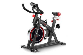 LCD Flywheel Spin Bike Home Exercise Cardio-workout Gym Aerobic Training