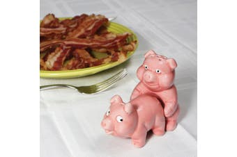 Naughty Novelty Pigs Salt & Pepper Shaker Set