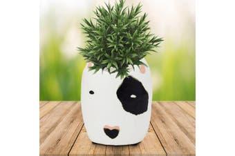 Rufus Black & White Bull Terrier Dog Ceramic Planter Pot 12cm
