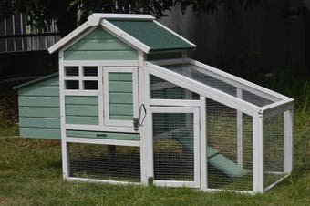 Green Small Chicken coop with nesting box for 2 Chickens / Rabbit Hutch