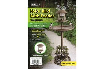 Bronze Look Solar Bird Bath and feeder with planters