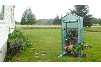 4 Tier Green House Garden Plant Protection multi level Display Tent
