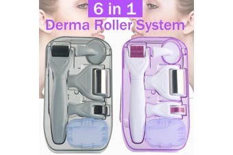 6 in1 Titanium Derma MicroNeedle Roller Kit Therapy Massager 0.5/1.0/1.5/2.0mm Hyaluronique Anti-Aging Remove Non Invasif Seringue Anti Wrinkle(purple,White/6 in1)