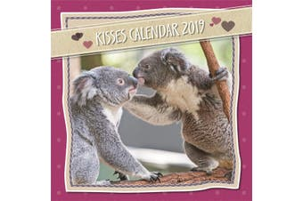Kisses - 2019 Premium Square Animals Wall Calendar 16 Months New Year Xmas Decor
