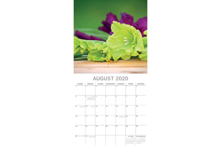 Flower of the Month - 2020 Premium Square Floral Wall Calendar 16 Month New Year