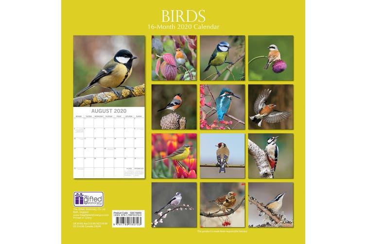 Birds - 2020 Premium Square Pets Wall Calendar 16 Months New Year Decor Gift