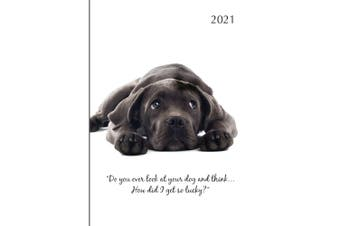 Adorable Dogs 2021 Premium Diary Planner A5 Padded Cover Christmas New Year Gift