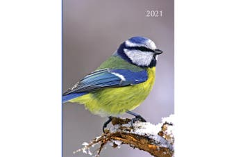 Birds 2021 Premium Diary Planner A5 Padded Cover Christmas New Year Gift