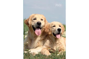 Dogs & Puppies 2021 Premium Diary Planner A5 Padded Cover Christmas NewYear Gift