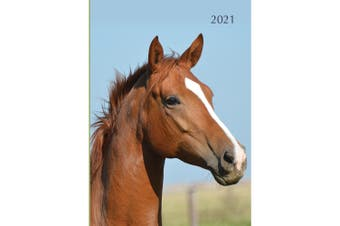 Horses 2021 Premium Diary Planner A5 Padded Cover Christmas New Year Gift