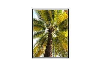 Khoa Lak Palm Wall Print